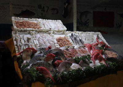 maroc-agadir-poisson-07B