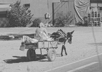 maroc-taroudant-ane-12
